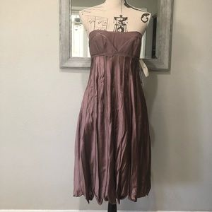 NWT BCBGMaxAzria Runway dress